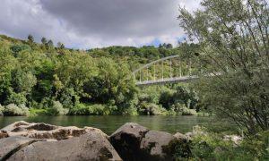 Orilla del Río Miño
