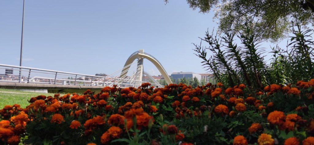 Puente del Milenio con flores