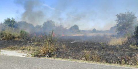 Incendio forestal en Porqueira