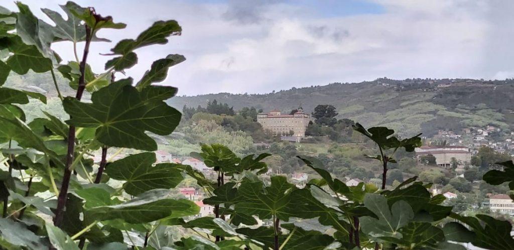 Seminario Mayor y Menor de Ourense