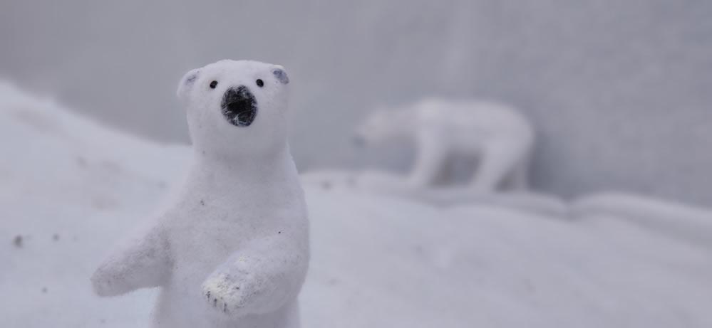 Oso polar en Allariz por Navidad