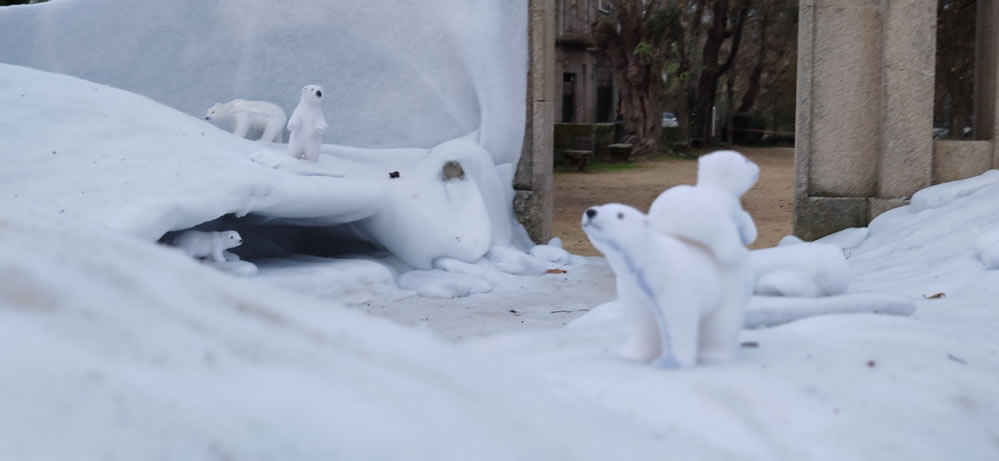 Osos polares jugando en la nieve