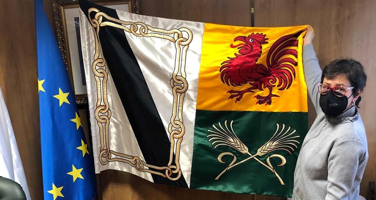 Bandera Xinzo de Limia
