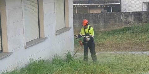 Operador de Jardinería