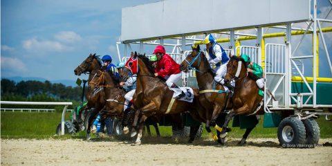 Carreras de caballos en Xinzo