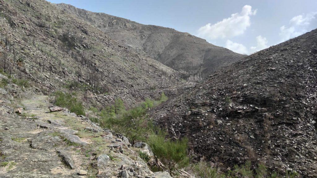 Montañas en el Xurés