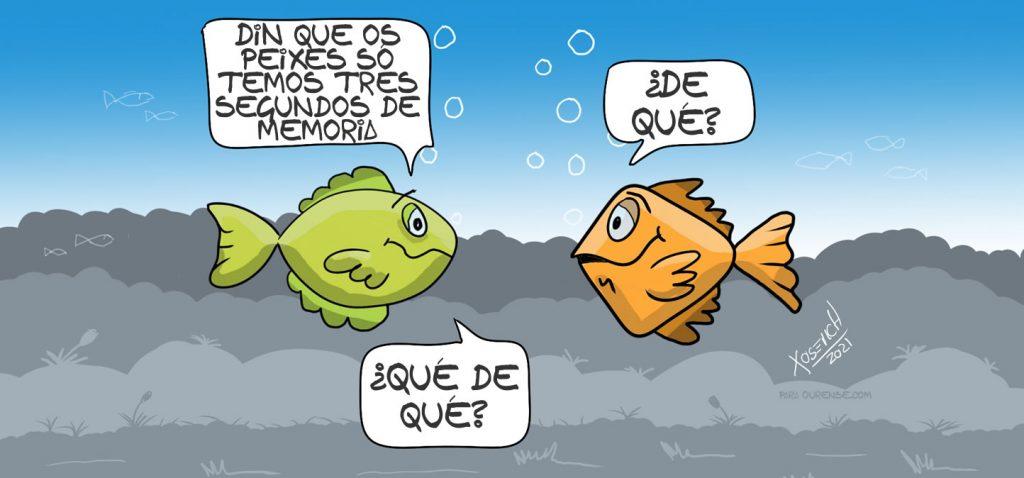 Xosevich memoria peixes