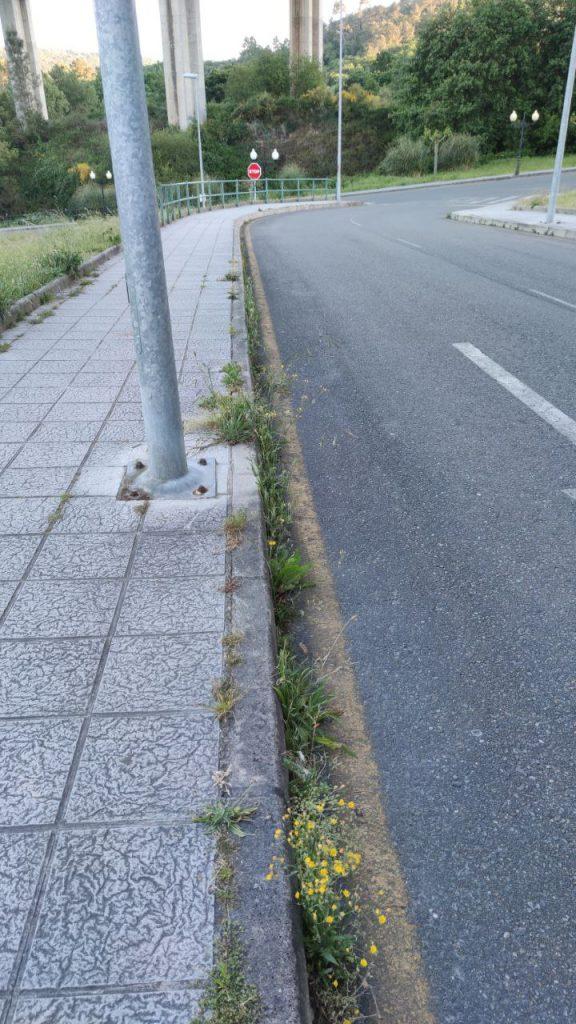 Aceras llenas de hierba en A Valenzá