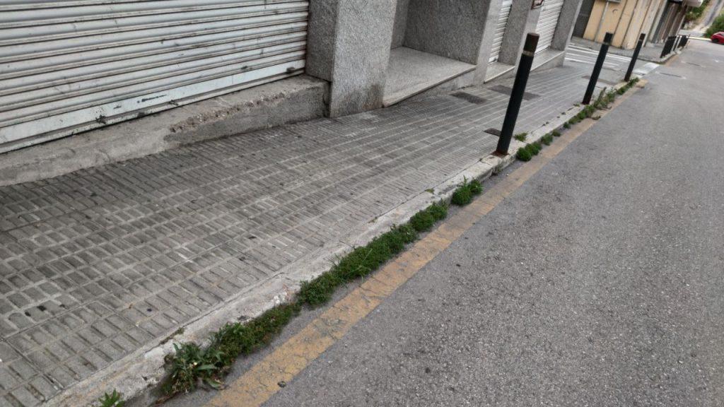 Hierba en las aceras de A Valenzá