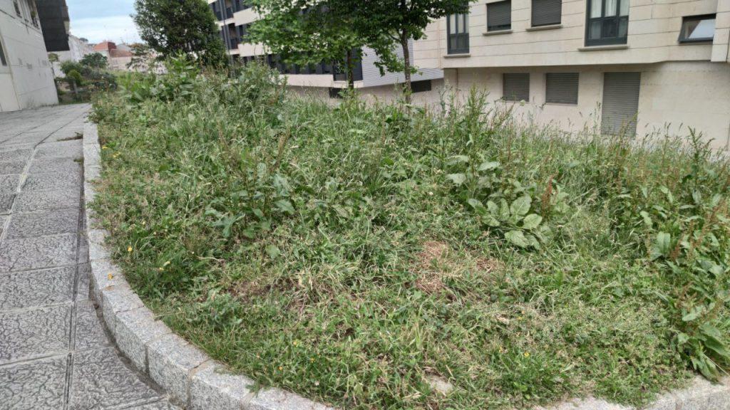 Jardín de A Valenzá