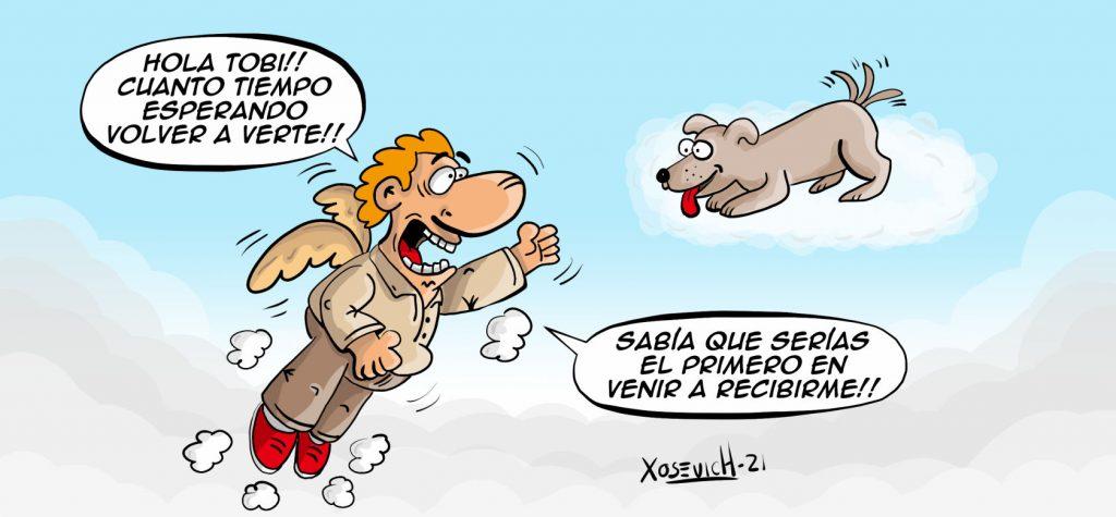 El cielo de los perros amor canino frases bonitas de amor xosevich 21